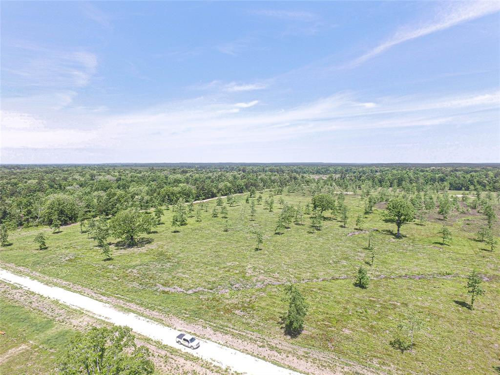 Beautiful 30 acres mostly cleared with some hard wood tree's. Ready to be fenced and turn the animals loose. Would make a nice home site. Located on the same road as Brushy Creek Ranch a subdivision consisting of 2 - 3 acre tracts. No mobile home allowed or dividing into smaller tracts.