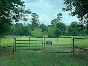 10.5 +/- Acres Stagecoach Road, Stagecoach, TX 77355