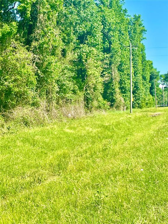 20.211 UNRESTRICTED ACRES!   Build your home here or create your own ranch.   Property is not cleared