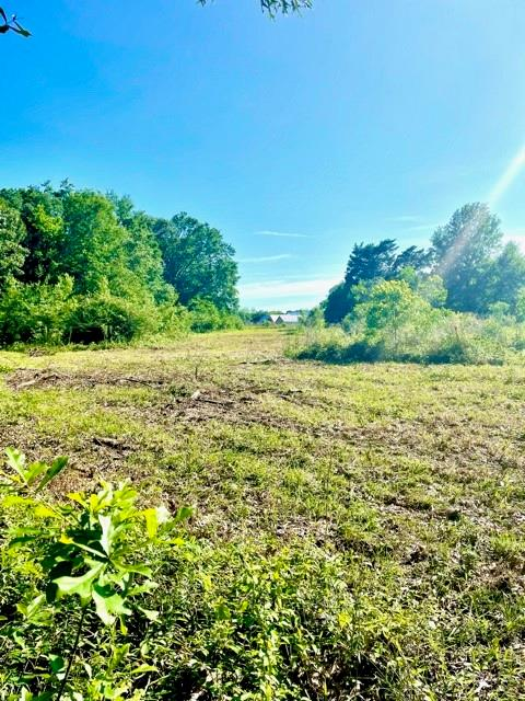 7.86 Unrestricted Acres.   Perfect to build your dream home or raise your animals.   Water /Sewer unknown