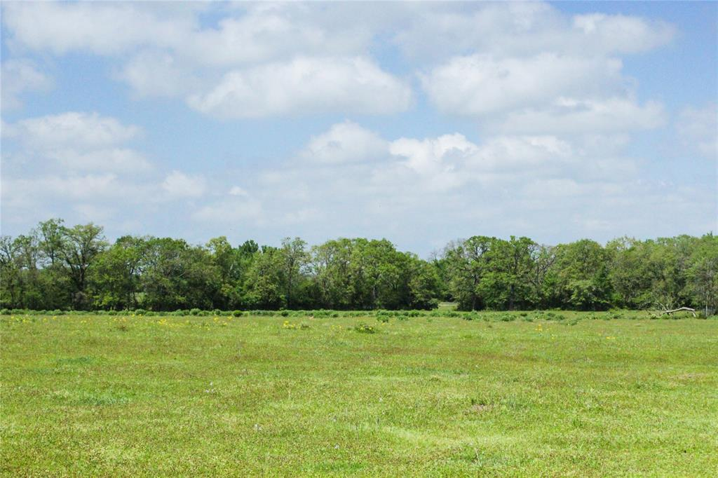 12.5 acres of ag exempt land. Beautiful, rolling terrain with natural grasses and native flowers. Spacious and adequate pastureland for cattle. Mixed variety of mature and young trees. This property will also be retaining an electrical easement to allow for building further back on the property. Enjoy quiet country living tucked away behind the trees! This property is located in the highly desired Anderson-Shiro school district. Less than 45 minutes from Huntsville and College Station, and less than 10 minutes from the proposed High Speed Rail Depot, making commuting to Dallas or Houston a snap!