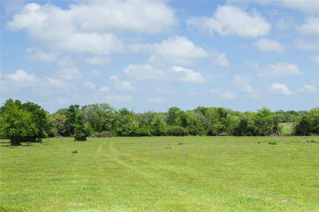 40 acres of ag exempt land. Beautiful, rolling terrain with natural grasses and native flowers. Spacious and adequate pastureland for cattle. Mixed variety of mature and young trees. This property will also be retaining an electrical easement to allow for building further back on the property. Enjoy quiet country living tucked away behind the trees! This property is located in the highly desired Anderson-Shiro school district. Less than 45 minutes from Huntsville and College Station, and less than 10 minutes from the proposed High Speed Rail Depot, making commuting to Dallas or Houston a snap!