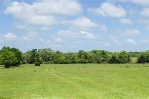 0040 County Road 229, Bedias, TX 77831