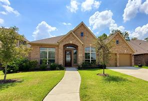 18832 Collins View Drive, New Caney, TX 77357