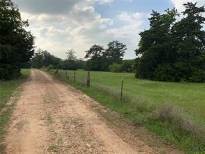 00 Old Laake Lane Lane, New Ulm, TX 78950