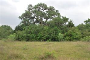 TBD Birdhouse Hill Road, Schulenburg TX 78956
