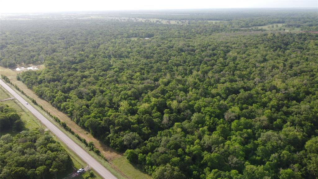 22-115 acre tracts. Heavily wooded. Just minutes to worlds largest medical center. 20 minutes to the states most popular beach. Incredible Wildlife Mecca. Current wildlife exemption. Convenient location, surrounded by other wooded tracts.