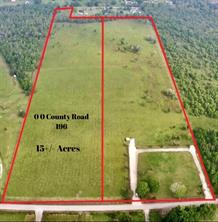 00 County Road 196, Liverpool, TX 77577