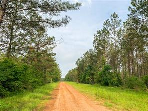 00 Morrell Road, Chester, TX 75936