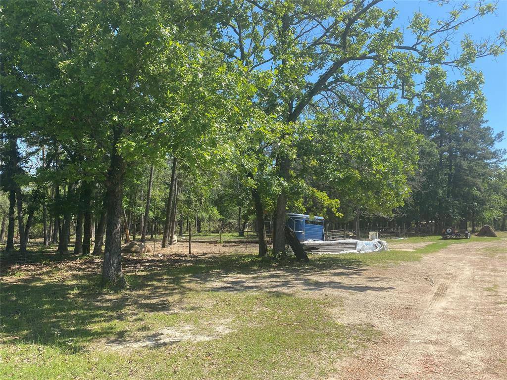 Unrestricted land with improvements. Charming camp cabin get away, with huge game room and out buildings. Perfect get a way to the country. Hunting, cattle, horses, farming, whatever you'd like.