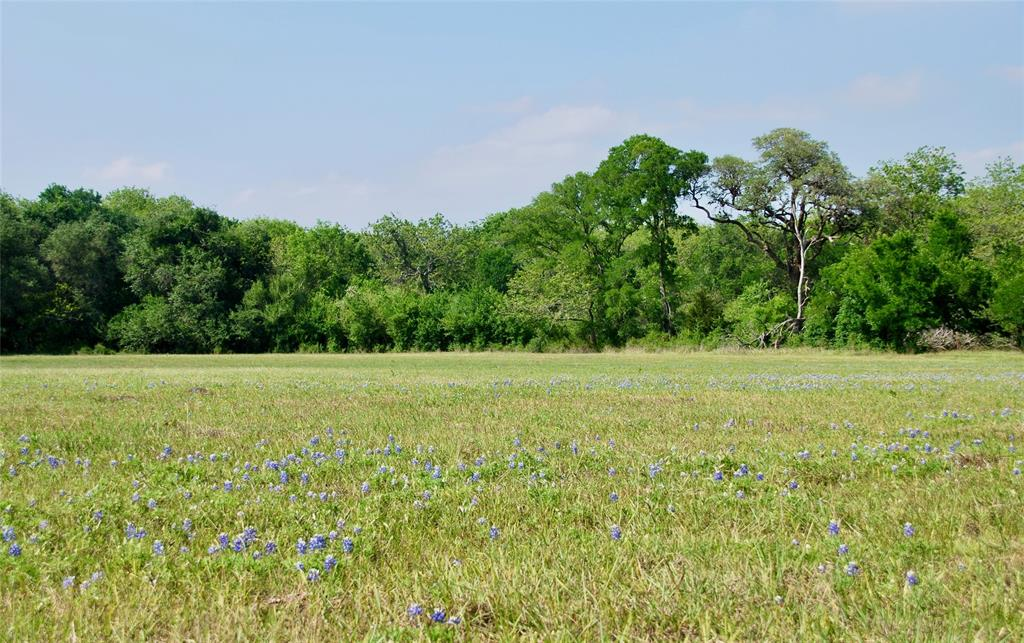 Tract 1: Wonderful views, come build your dream home on top of the hill and enjoy the beautiful countryside from your back porch! Mature pecan trees traverse the creek bottom and provide ample shade for livestock and great habitat for wildlife! This is the perfect location in northern Lavaca County, just minutes from I-10 and Highway 95. Ideal real estate between Praha, Flatonia, and Moulton!  This is an ideal tract size on a quiet country road with little traffic.