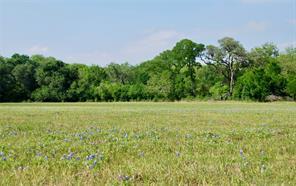 188 County Road 257A, Moulton, TX 77975