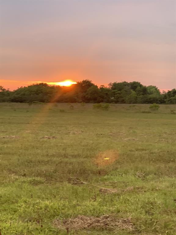An amazing, private, 6 acre piece of land for your dream homestead.  Build your traditional single-family, a barndominium or use for agriculture.  This property has a driveway entrance off Vacek that leads to a secluded section of land with a pond.  The elevation of this land is premium since it is not in a flood zone!  This property is within the Santa Fe ISD boundaries but outside the city limits.  Electricity is available nearby but well and septic would need to be added. Deed restrictions prevent the use of this land for mobile homes but the property use is otherwise unrestricted.  An agriculture tax exemption has also been held on this land and is transferable to the new owner.