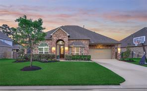 25202 Summer Chase Drive, Spring, TX 77389