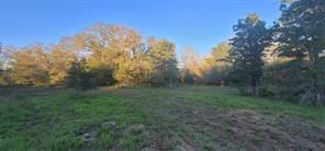 1721 Wood Haven, Waelder, TX 78959