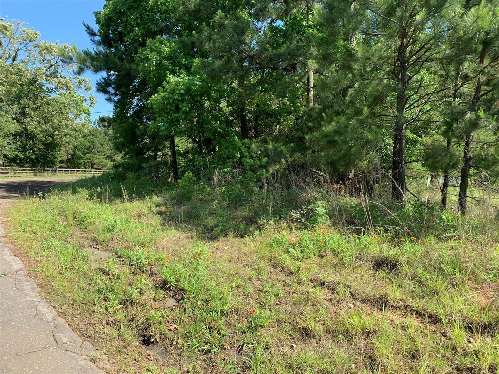 TBD County Road 239, Jasper, TX 75951