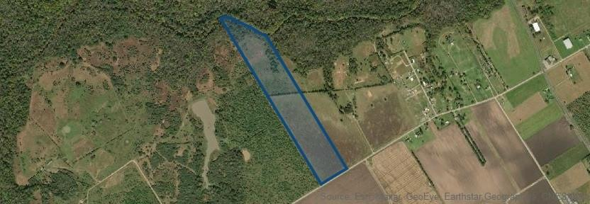 45.8 Acres with direct access to the San Bernard River. Great property to get away from it all - located in Western Fort Bend County, south of the town of East Bernard and north of the town of Beasley. Property is fully fenced, mostly level and slopes down at the back or north side toward the river. Brand new gated entry onto the property. Very open and partially wooded at the river. Build your own home and have horses and cattle in the pasture. Wildlife abound for the hunters. Property originally purchased to be used as a grass strip runway for personal aircraft because of length and how it lies with prevailing winds. Runways 14/32 and approx 2,500 ft long.