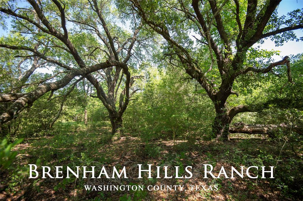 Approx. 197.238 acres located just outside of Brenham, TX with quick access to downtown and shopping.  Approx. 1.4 miles from HWY 290.  Property offers a rolling terrain with elevations ranging from ±375' - ±295', mix of wooded areas and open meadows, mostly sandy loam soil, groves of Live Oaks trees & other hardwood trees and Jackson Creek is on western property boundary.   There is paved frontage on FM 389.  This is a great site for investment, future development for a subdivision or large ranch home site.
