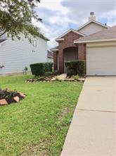 14118 Noahs Landing Lane, Houston, TX 77047