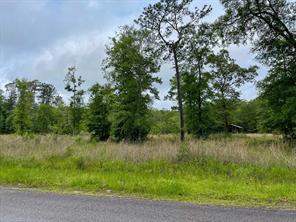 4554 Oil Field Loop Road, Village Mills, TX 77663