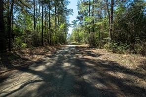 tbd County Road 3650, Colmesneil, TX 75938