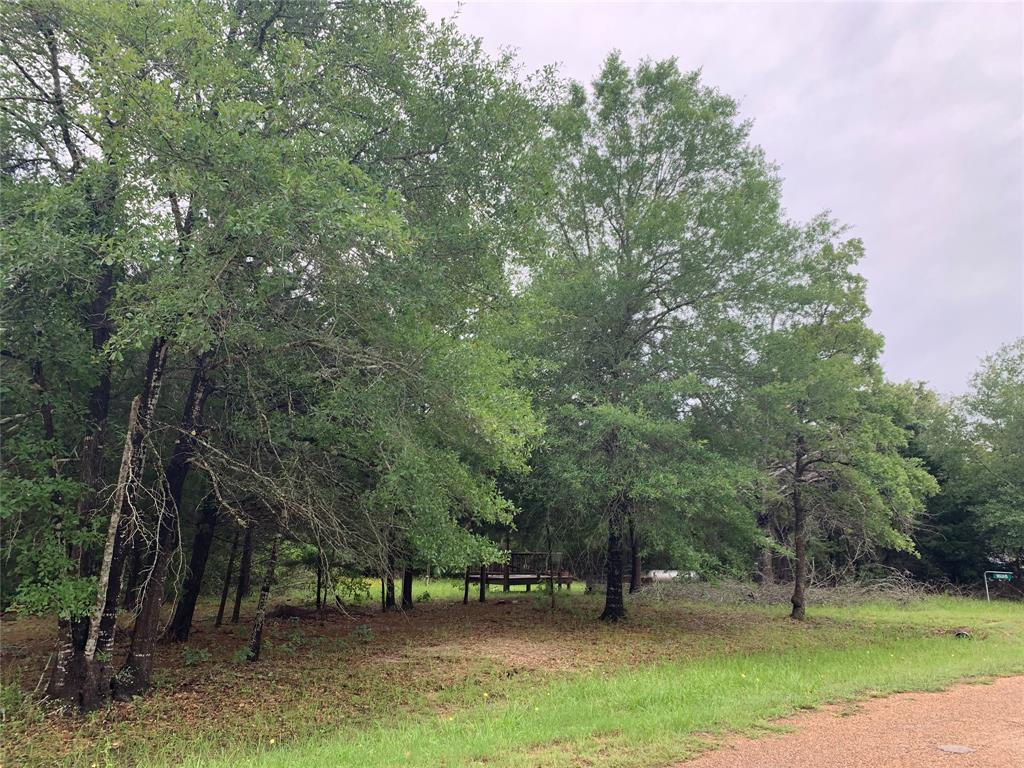 1635 Big Berry Road, Somerville, TX 77879