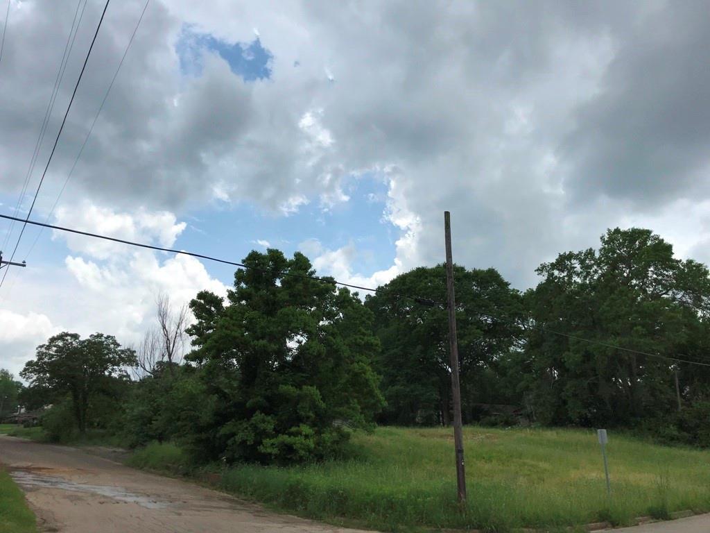 505 S Sylvan Avenue, Palestine, TX 75801