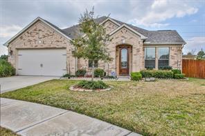 25946 Celtic Terrace Drive, Katy, TX 77494