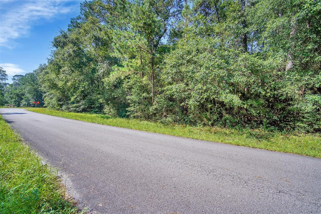 Lot 15 Appian Way, Roman Forest, Texas 77357, ,Lots,For Sale,Appian Way,80795226