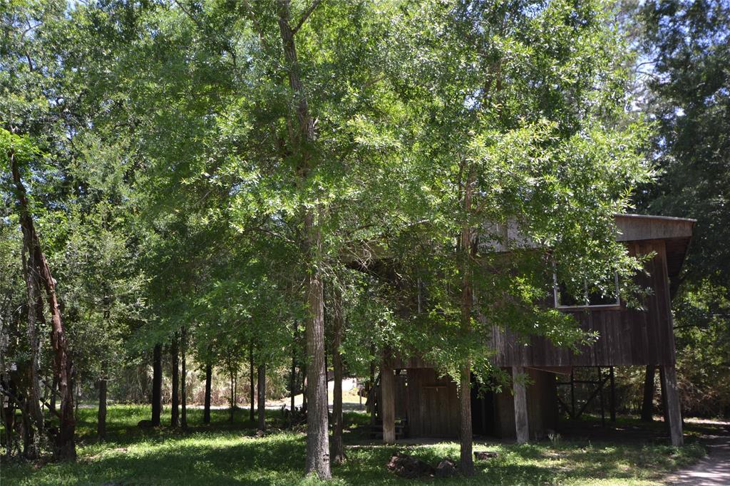 1323 Deepwood Drive, Friendswood, TX 77546