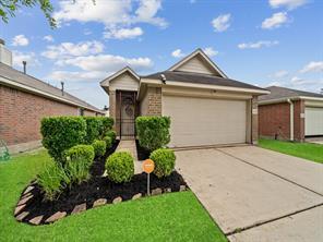 14114 Noahs Landing Lane, Houston, TX 77047