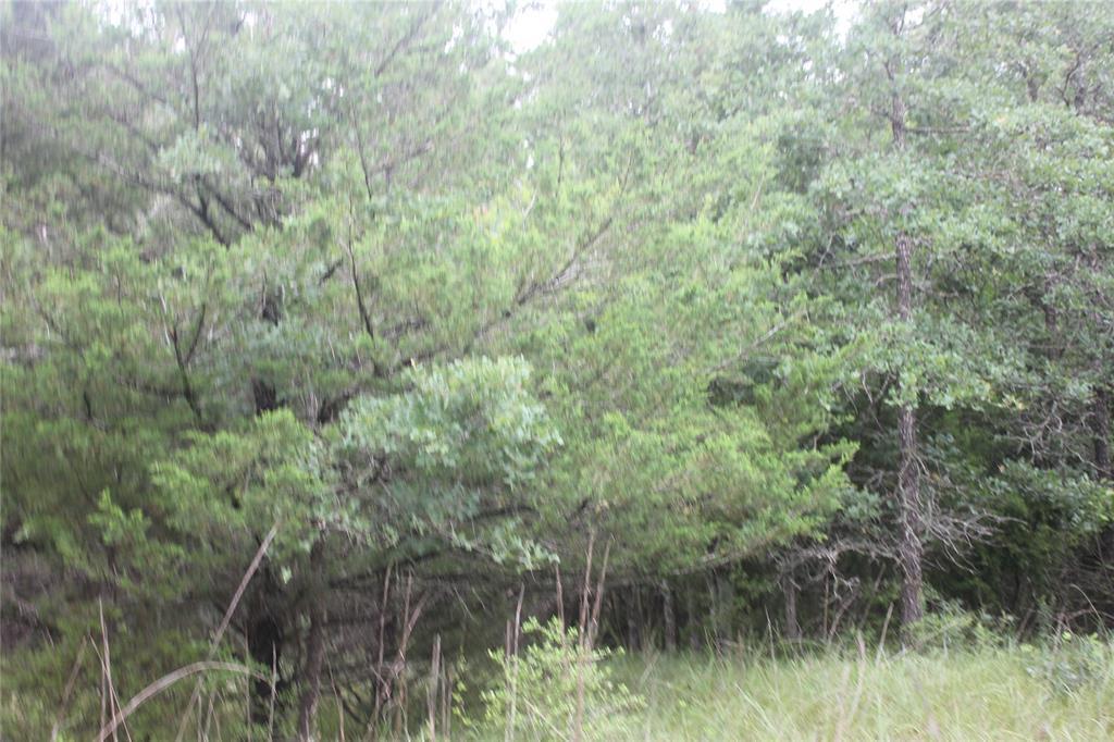 TBD Rose Hill Rd, Calvert, TX 77837