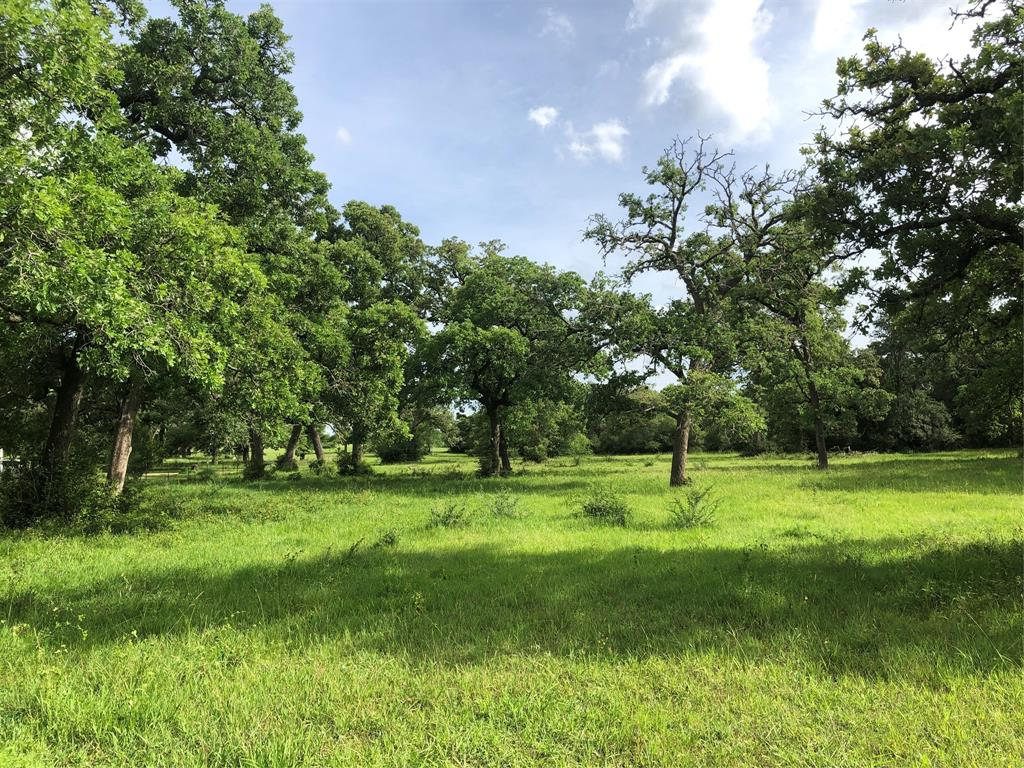 Small tracts of land in the country are hard to find, this one won't last long. Buy now, build your dream home in the future. Livestock & horses allowed. Open land with oak trees. Conveniently located near the city limits of Hallettsville in Lavaca county. Paved road frontage, electricity near by. Water well needed. Survey provided at no expense to the buyer. No mobile, manufactured or modular homes are the only deed restrictions.