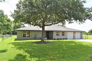 102 Meadow Lane, Jones Creek, TX 77541