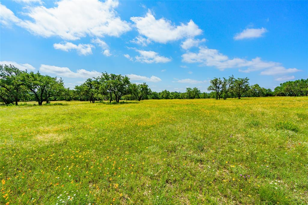 116 Bluff Point Court, Marble Falls, TX 78654