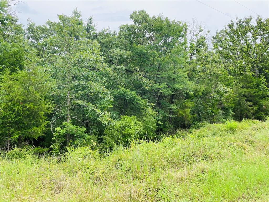4 Lots CR 915, Groesbeck, Texas 76642, ,Lots,For Sale,CR 915,64202415