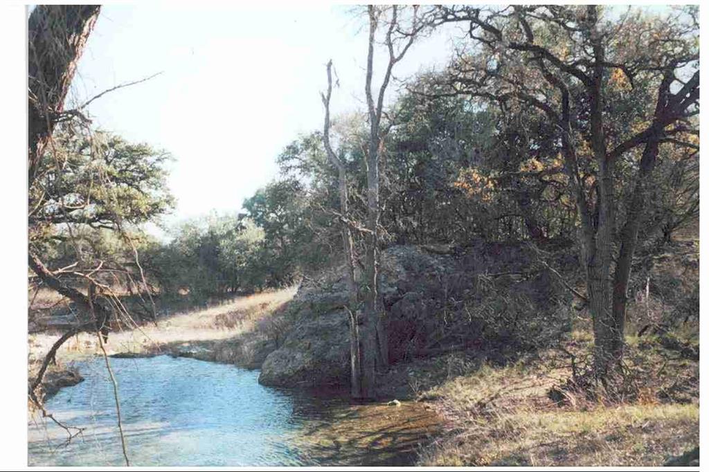 1409 Lavaca Drive, Canyon Lake, TX 78133