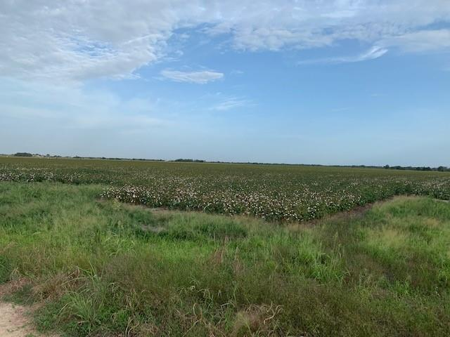 Approximately 63 +/- acres prime row crop land.  Well drained and located in Lavaca County.  Paved road frontage.