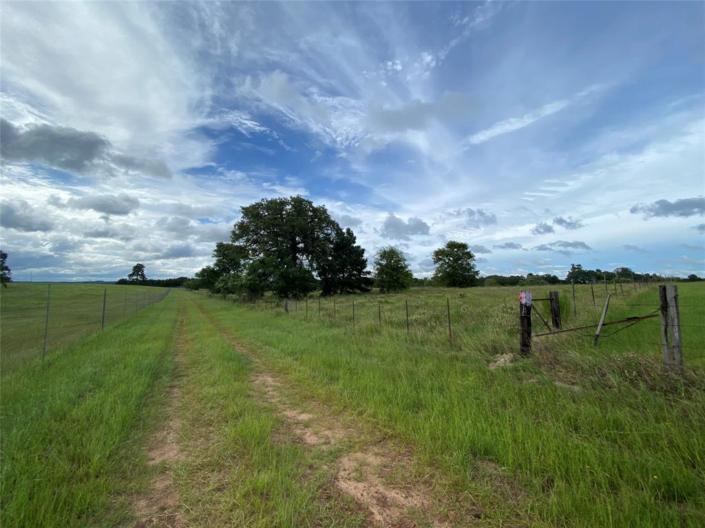 TBD Private Road 5215, Grapeland, TX 75844