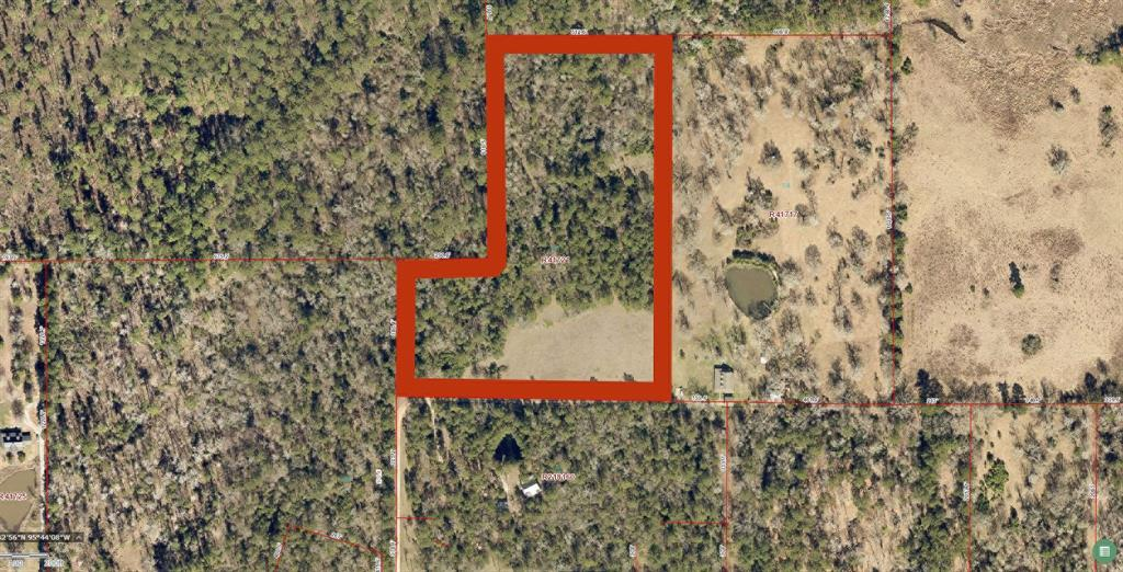 0 Forest Trace Road, Richards, TX 77873