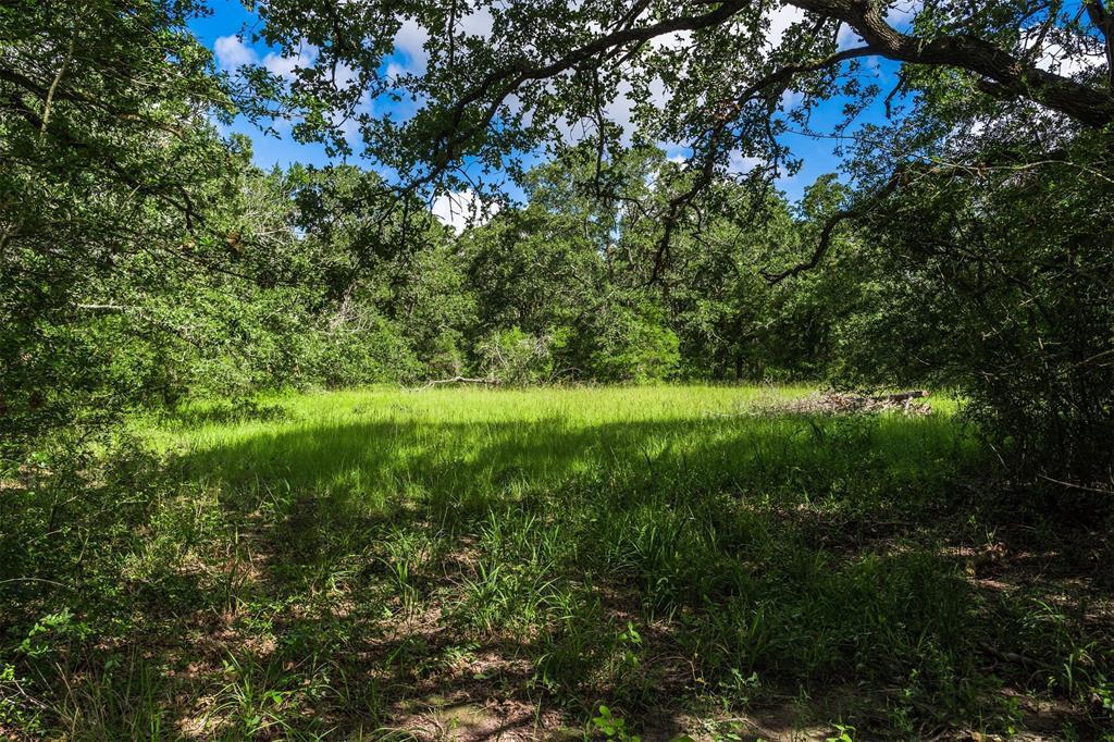 2 County Road 129, Bedias, TX 77831