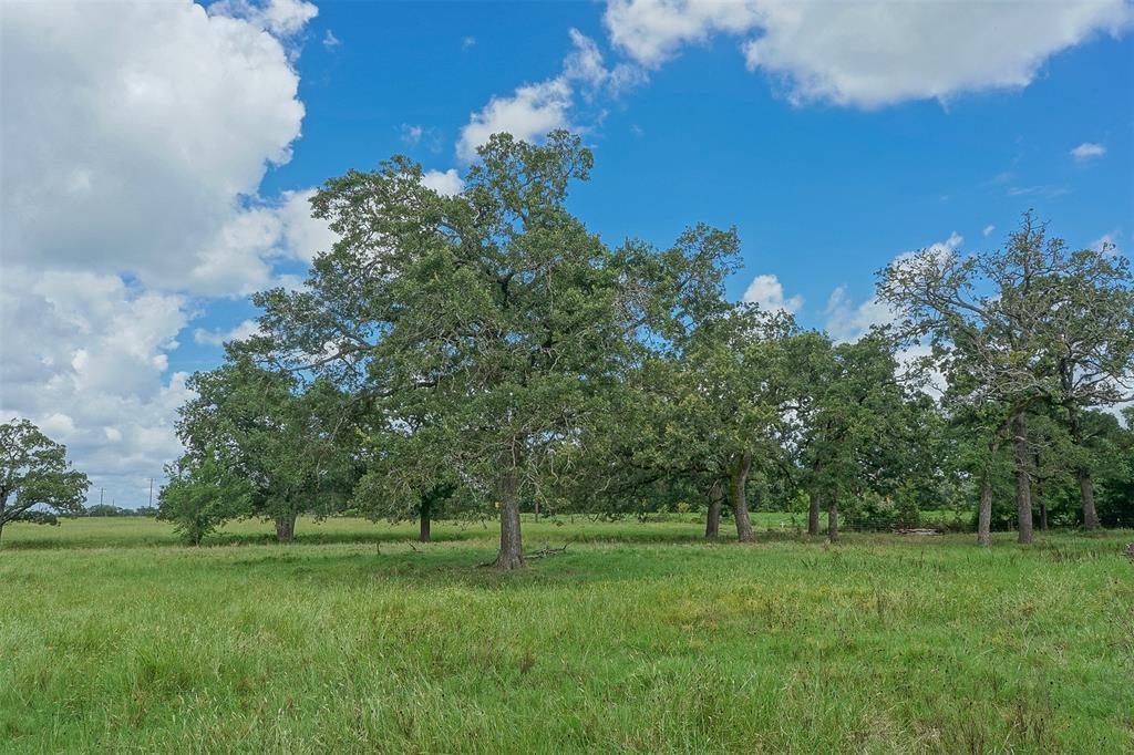 14.75 Acres Highway 21, North Zulch, TX 77872