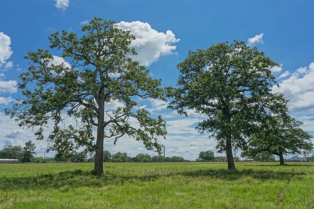 10.4 Acres HWY 21, North Zulch, TX 77872