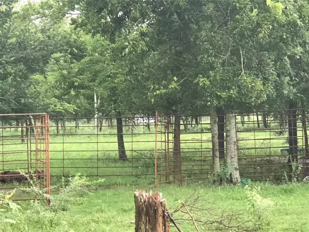 TBD Pindula Road, Sealy, TX 77474