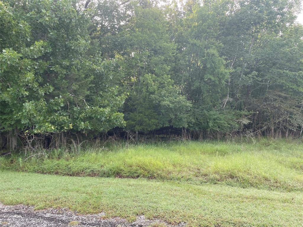 165 Pine Harbour Drive, Coldspring, Texas 77331, ,Lots,For Sale,Pine Harbour,66519529
