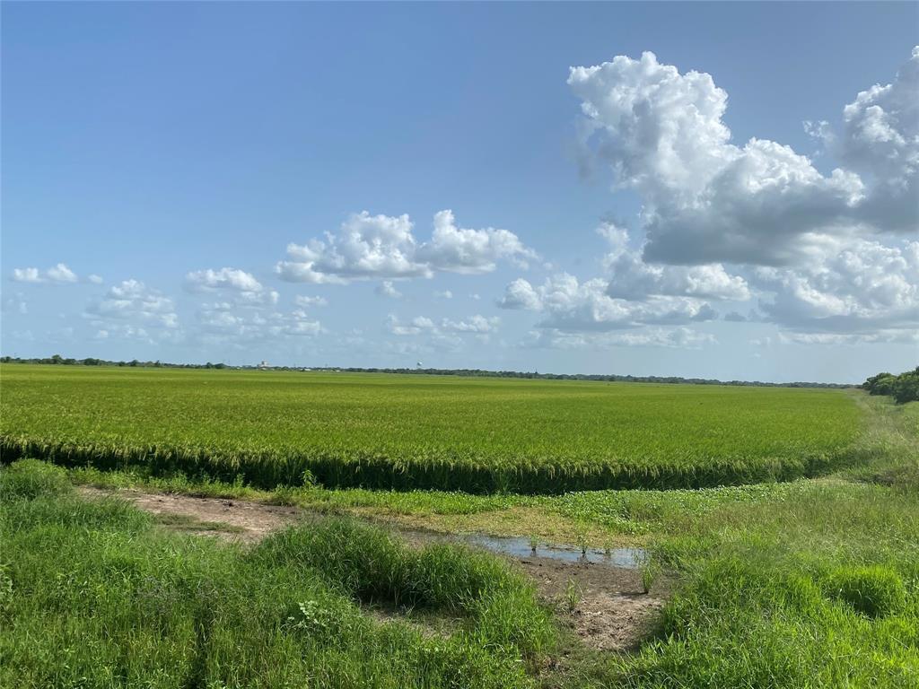 000 Cat Spring Road, Eagle Lake, TX 77434