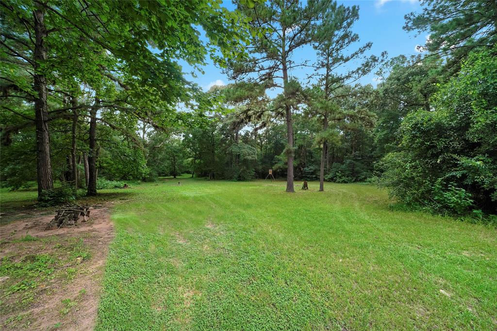 Here's a great shot of the wooded back part of your 2.4+ acre lot.