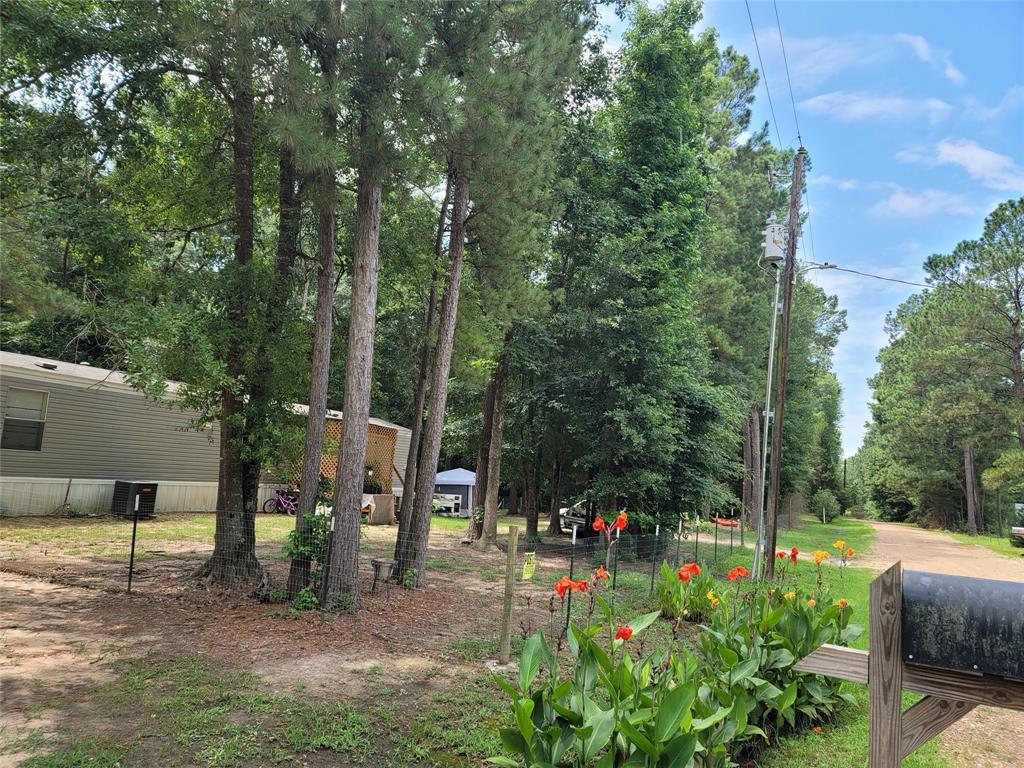 446 Willow Ln, Livingston, TX 77361