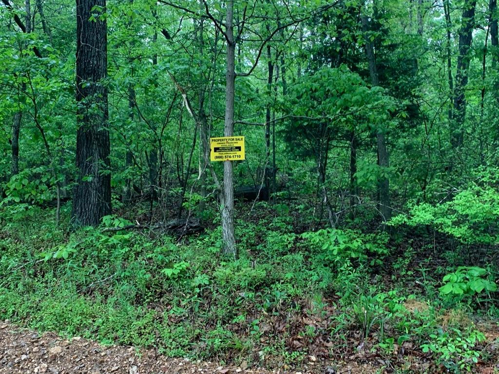 Lot 26 Hitching Post Drive, Other, AR 72482