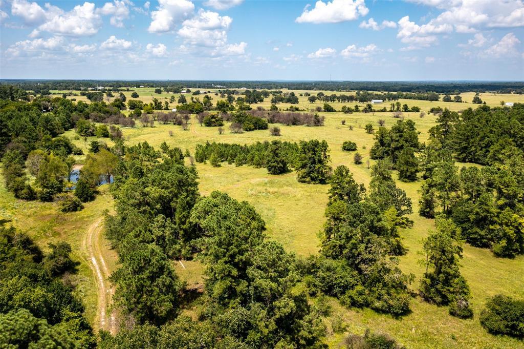 170 Acres Sterling Chapel Road, Huntsville, TX 77320